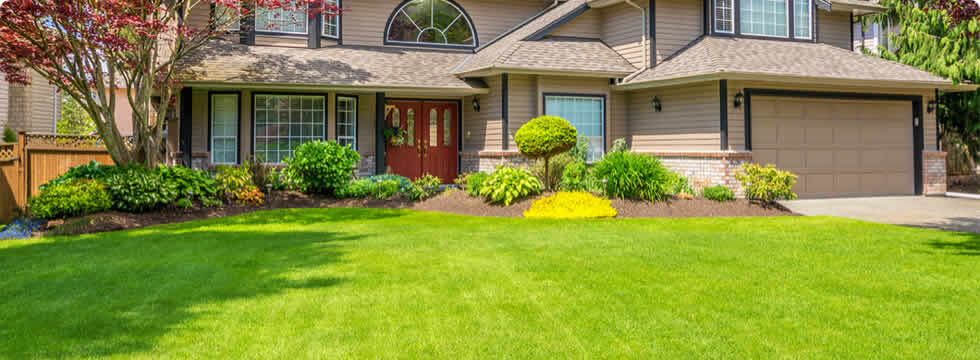 The Grass is Always Greener with Our Pros - Landscaping - San Diego Landscapers - San Diego, CA Chop Chop